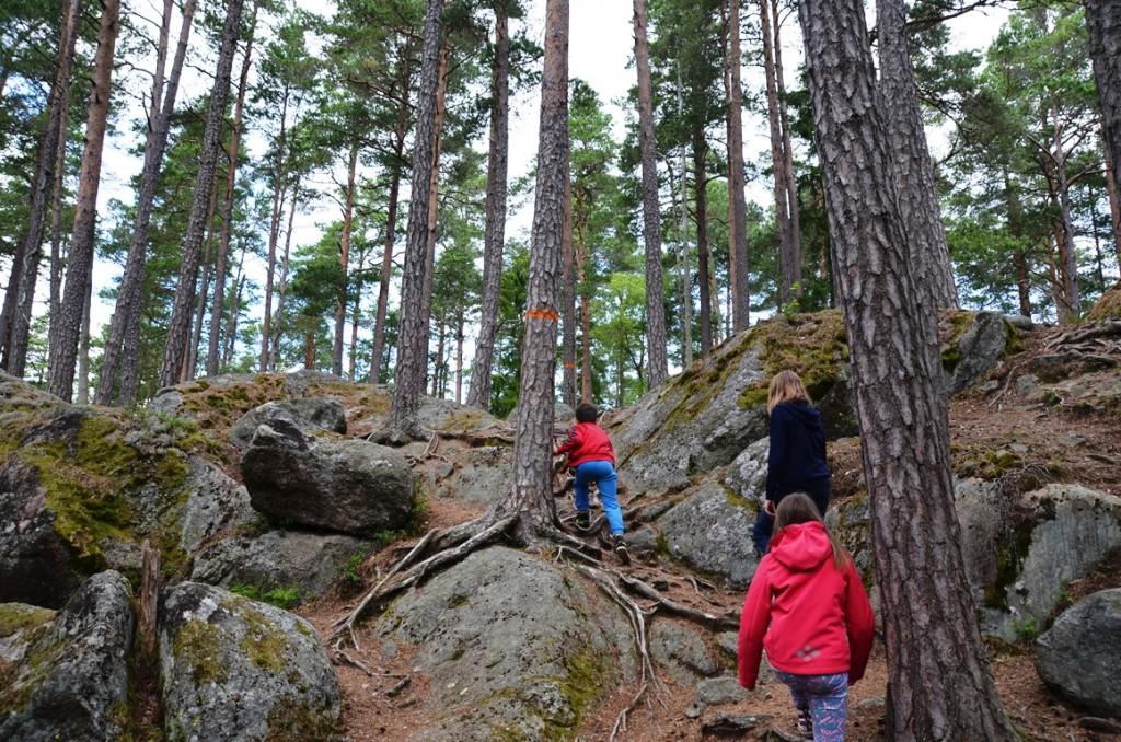 Wandelen in Nationaal Park Tiveden