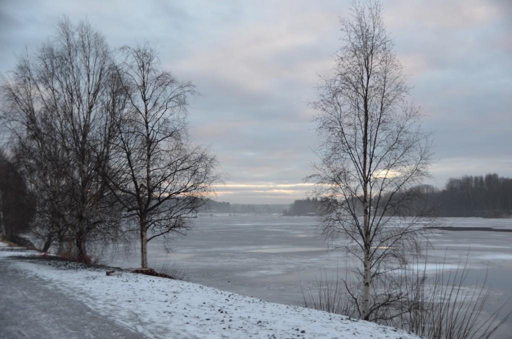 Straten van Umea rivier bij Bildmuseet