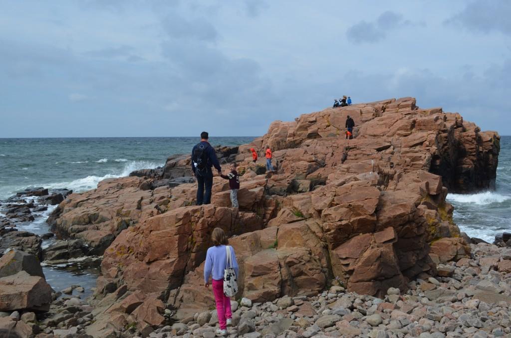 Zweedse kust Hovs Hallar