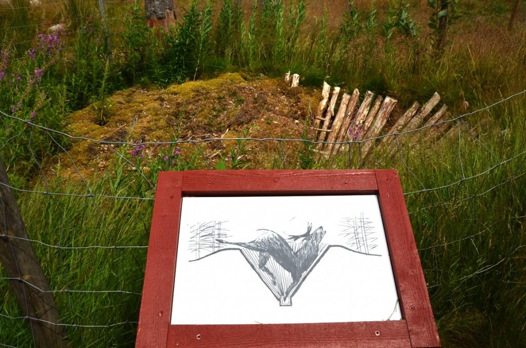 Reconstructie van een hertenval bij rotstekeningen van Tanum en Vitlycke Museum
