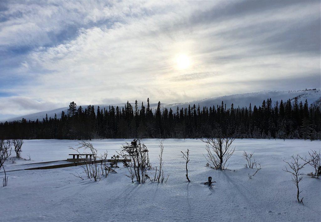 wandelen naar de njupeskar in de winter